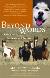 beyond-words4